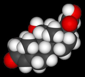 コルチゾール