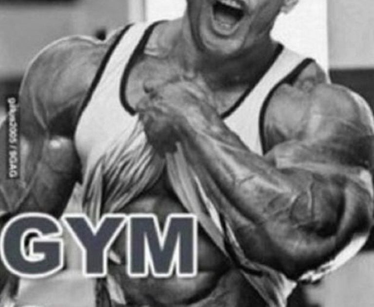 筋肥大(筋タンパク質合成)に最適な トレーニング頻度 と具体的メニュー
