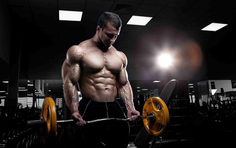 上腕二頭筋 を科学的アプローチで徹底的に鍛え上げるトレーニング種目と筋トレ方法