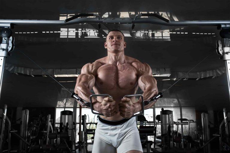 大胸筋 を科学的アプローチで徹底的に鍛え上げるトレーニング種目