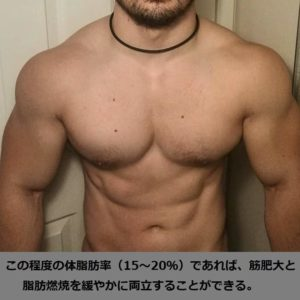 筋肥大と脂肪燃焼