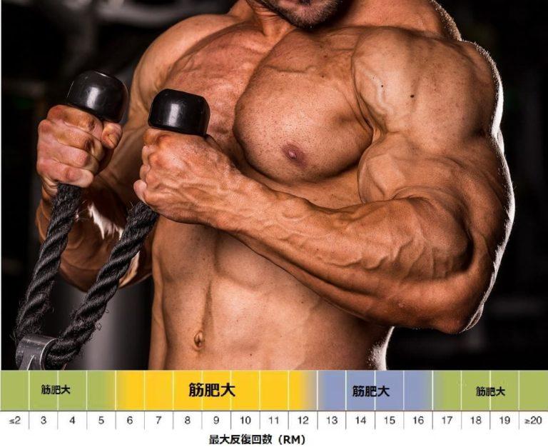 筋肥大に最適なレップ数 を科学的根拠に基づき把握しておこう!
