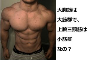 筋肉の大きさ