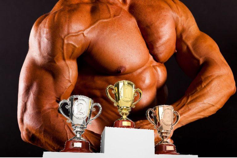 筋肉の大きさ ランキング(筋体積)を正しく理解して筋肥大を引き出そう