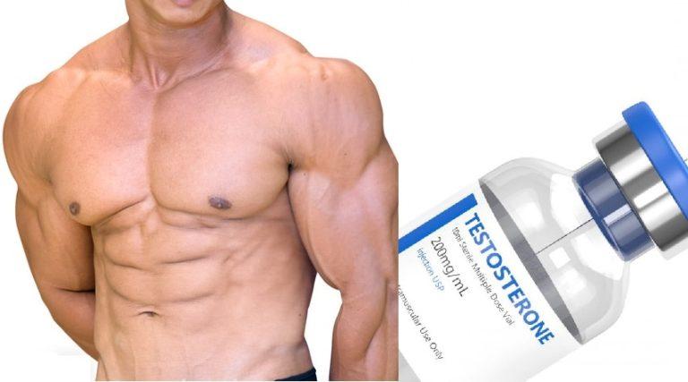 筋トレとテストステロン の関係を正しく理解して筋肥大を最大化しよう