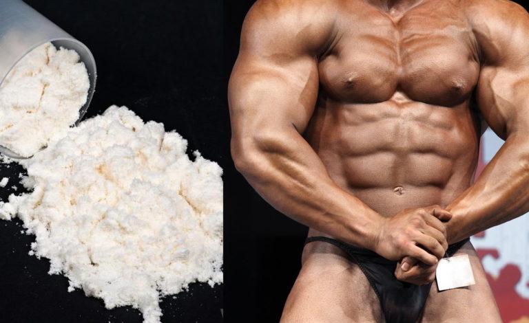プロテインと筋トレ  |タンパク質の摂取に関する6つの最重要ポイント