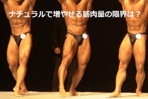 ナチュラルボディビルディング で増やせる筋肉量の限界は?|FFMI値で現実を知る