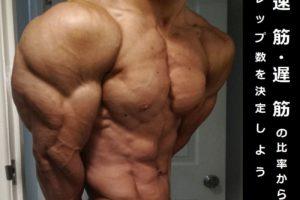 筋線維 (速筋・遅筋)の比率から筋肥大に最適なレップ数を決定しよう